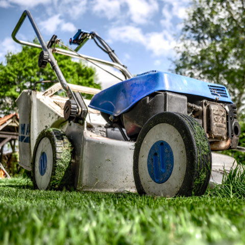 lawn care online payments